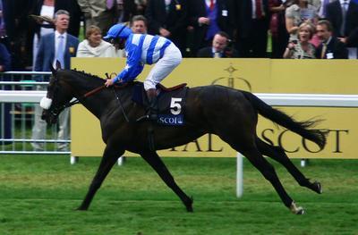 Horserace in Ascot