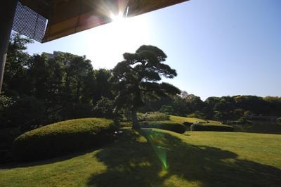 Garten in Kahin Mukahara Tokio